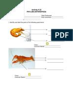 Act. Sheet 22 Phylum Arthropoda