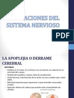Alteraciones Del Sistema Nervioso 1