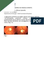 Il Glaucoma Primario Ad Angolo Aperto