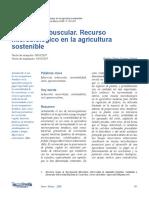 Dialnet-MicorrizaArbuscularRecursoMicrobiologicoEnLaAgricu-4835698