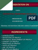 presentationonpraplaprocess-130414140910-phpapp01