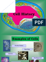 Cell Theory, Parts and Functions