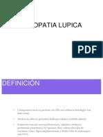 nefropatialupica 1