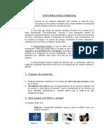 AnonimoEntomologia Forense.pdf