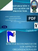 Proyectos Cap 10