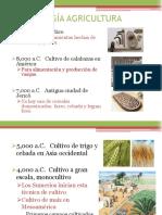 Historia agricultura