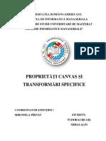 Referat Proprietati Canvas Si Transformari Specifice