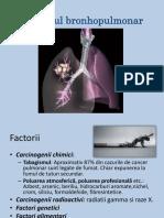 Cancerul Bronhopulmonar Si Esof