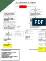 Flujograma Plan de Contingencia