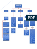 Mapa Conceptual Sobre Psicopatologia Evolutiva