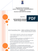4ª Aula..Socialização Organizacional