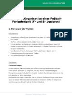 Tipps Zur Organisation Einer Fussball-Ferienfreizeit F- Und E-Junioren