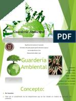 guarderiaambientaldiapositivas-160514021803