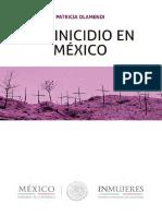 Feminicidio-en-Mexico-2017.pdf