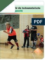 Dfb Manual Leistungsdiagnostik Low
