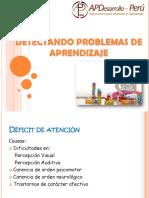 DETECTANDO PROBLEMAS DE APRENDIZAJE.pdf