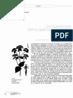 15902-48906-1-PB.pdf