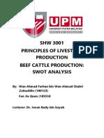 SWOT Beef Cattle