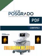 1. Evaluacion Utero - Patologias