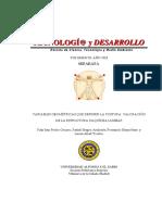 identificación de angulaciones vertebrales.pdf