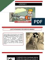 Derecho Minero Unidad