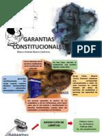 UTEA  GARANTIAS CONSTITUCIONALES