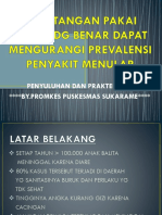 PP Penyuluhan CTPS