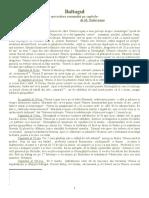 38699615-Baltagul-Povestire-Pe-Capitole.doc