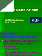 Renal Pathology 3
