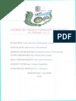 CHANAGUANO VICTOR.pdf