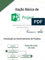 Capacitação Básica de Project