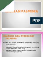282234446-Laserasi-palpebra.pptx