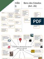 89097407-Mapas-Mentais-Flavia.pdf