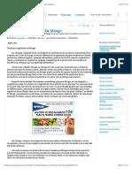 Ventajas Competitivas de Mango - Documentos de Investigación