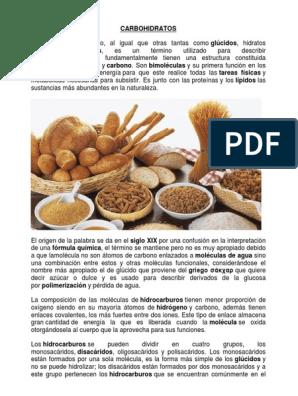alimentos que contengan disacaridos ejemplos