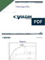 Manual Variografia Revision