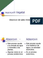 Nutrición Vegetal2