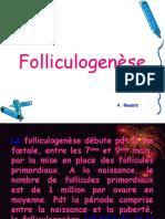Folliculogenese