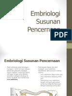 Embrio Anat ususbesar