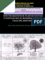 Efectos Gráficos de Plantas