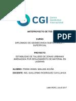 Anteproyecto TSD - Frank Angel MALLMA ACUÑA