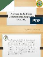 Auditoría 1 Nagas Universidad Nacional de Ucayali 2017