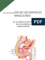 Semiología de Los Genitales Masculinos (1)[1]