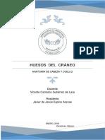 HUESOS  DEL  CRÁNEO.docx