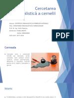 Cercetarea Criminalistică a Cernelii Rodica B. _ Stefan C.