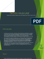 Tecido Muscular - Biologia