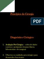Princípios Da Cirurgia