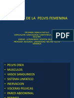 ANATOMIA DEL PISO PELVICO - copia - copia.pptx