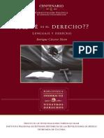 Caceres Nieto - ¿Que es derecho_.pdf