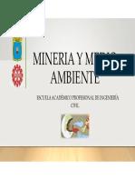 Mineralogia y medio ambiente
